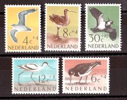 Pays-Bas - 1961 - N° 733 à 737 - Neufs ** - Oiseaux - Neufs