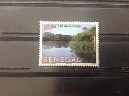 Senegal - Mangrovebossen (300) 2002 - Senegal (1960-...)