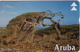 TARJETA TELEFONICA DE ARUBA. 602C, ARBOL, DIVI DIVI TREE Ll (007) - Aruba