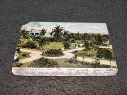 RARE ANTIQUE POSTCARD BAHAMA ISLANDS NASSAU GROUNDS AT COLONIAL HOTEL CIRCULATED 1906 - Postcards