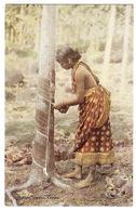 CEYLON - SRI LANKA -  A Rubber Tapper, Ceylon - FEMME - WOMAN - METIER - Sri Lanka (Ceylon)