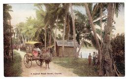 CEYLON - SRI LANKA -  A Typical Road Scene, Ceylon - Sri Lanka (Ceylon)