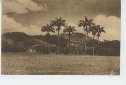 ANTILLES - TRINIDAD - View Across The Queen's Park To SAVANNAH - Trinidad