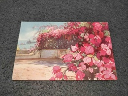 ANTIQUE POSTCARD PORTUGAL MADEIRA FLOWERS BOUNGAINVILLE MAX ROMER PAITING CIRCULATED NO STAMP 1931 - Madeira