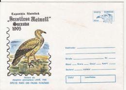 BIRDS, EGYPTIAN VULTURE, COVER STATIONERY, ENTIER POSTAL, 1995, ROMANIA - Adler & Greifvögel