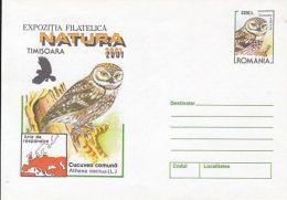 BIRDS, LITTLE OWL, COVER STATIONERY, ENTIER POSTAL, 2001, ROMANIA - Eulenvögel