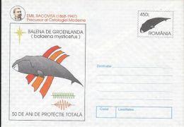 MARINE MAMMALS, BOWHEAD WHALE, E. RACOVITA, COVER STATIONERY, ENTIER POSTAL, 1997, ROMANIA - Wale
