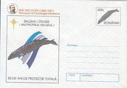 MARINE MAMMALS, GRAY WHALE, E. RACOVITA, COVER STATIONERY, ENTIER POSTAL, 1997, ROMANIA - Wale