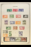 1900-49 ALL DIFFERENT MINT COLLECTION Includes 1900 1d, 1902-03 1d And 2½d, 1905 ½d And 2½d, 1912-20 Range To 6d, 1917-2 - Cayman Islands