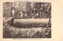 MOGANO SAPELI - Squadratura Dei Tronchi - S. A. CARLO DE CAPITANI - LISSONE - Niger