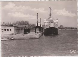 """Ille  Et  Vilaine  : SAINT  MALO :  Bateau Paquebot   """"  Falaise """" , Les  Bassins  Service  Pour  Jersey - Saint Malo"""