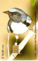 174 TARJETA DE CUBA DE EL PAJARO BIRIJITA DEL PINAR (BIRD) - Cuba