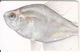VENEZUELA(chip) - Fish, 05/97, Used - Venezuela