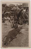 A Crocodile - Singapore