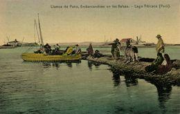 Peru, Lago Titicaca, Llamas De Puno, Embarcandose En Las Balsas (1910s) Postcard - Perú