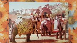 India, Amber Palace , Elephant - Old Postcard - Elephants