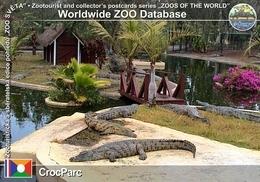 199 CrocParc, RE - Nile Crocodile (Crocodylus Niloticus) - Reunion