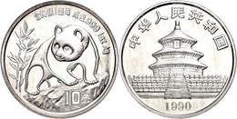 535 10 Yuan, 1990, Panda Auf Felsen, Großes Datum, KM 276, Schön 273, In Kapsel, Patina, St.  St - China