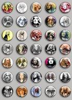 Robert Plant Music Fan ART BADGE BUTTON PIN SET (1inch/25mm Diameter) 35 DIFF - Music