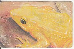 VENEZUELA(chip) - Frog, 05/97, Used - Sin Clasificación