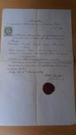 P1009.4  Old Document -Austria  Füles  Nikitsch Burgenland - Paulus Perger - Dorothea Mraz -  Rasztovich Lipkovits 1869 - Unclassified