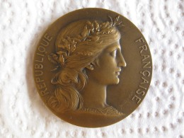 Medaille Institut Sténographique Paris, Par Daniel Dupuis - France
