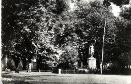 34  SAINT PONS  -  LE JARDIN PUBLIC  -  CPSM 1950/60 - Saint-Pons-de-Mauchiens