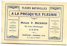 LYON(CARTE DE VISITE) MAISON MICHAUD - Visiting Cards