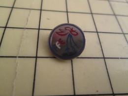 1215c Pin's Pins / Beau Et Rare : Thème SPORTS / ESCRIME Mini Pins COQ TRICOLORE FFE FEDERATION FRANCAISE - Fencing