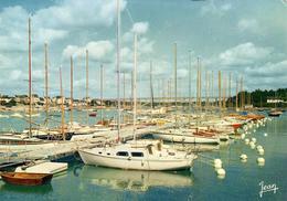 D56  LA TRINITÉ SUR MER  Le Port De Plaisance ..............  éditeur Jean à Audierne  N°23.056-9 - Bretagne