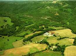 Carte Postale (81)  CASTELNAU-de-MONTMIRAIL - Ferme Equestre De La Grésine  SAINT-BEAUZILE - Castelnau De Montmirail