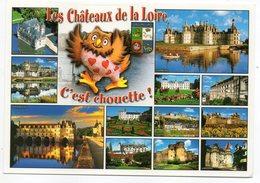 Les Chateaux De La Loire-C'est Chouette !-Multivues(Azay,Chambord,Amboise,Cheverny,Blois,Chenonceaux,Loches,Villandry... - Oiseaux