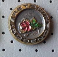 Roses Flowers  Yugoslavia Pin - Unclassified