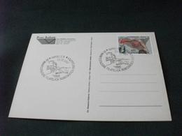 POSTE ITALIANE PACCO NATALIZIO ANNULLO XV MANIFESTAZIONE FILATELICA NUMISMATICA PARTENOPEA 1997 NAPOLI - Poste & Postini