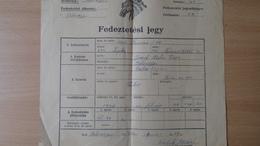 P1009.19  Hungary  Bélmegyer  - Horse Pferd Cheval -Fedeztetési Jegy -Lepke  -Nóniusz 34-4  1952   Mezöhegyes Méntelep - Rechnungen