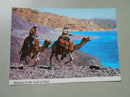 ARABIE SAOUDITE BEDUINS AT THE GULF OF EILAT - Arabie Saoudite