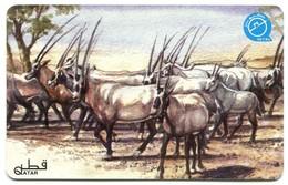 QA-QTL-AUT-0079 - Arabian Oryx - Qatar