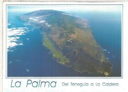 LA PALMA ESCRITA - La Palma