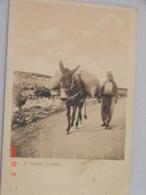 C.P.A.- Asie - Beyrouth - Un Druse Menant Son Âne Chargé Au Village - 1920 - TTB (AC54) - Lebanon