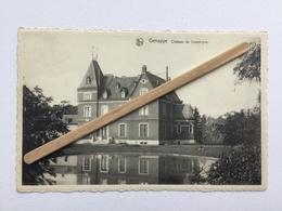 GENAPPE -LOUPOIGNE «CHÂTEAU DE LOUPOIGNE »Panorama,étang (Édit  DESCHUYTENER )NELS - Genappe