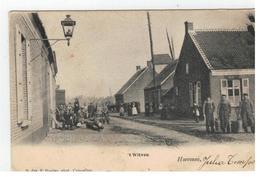 Hoevenen, 't Witven 1903 (met Molen) - Stabroek