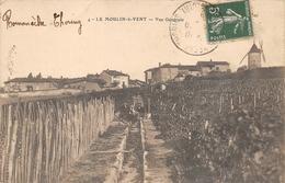Romanèche Thorins Le Moulin à Vent Vignes Canton La Chapelle De Guinchay - France