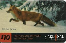 CARTE-µ-PREPAYEE-CANADA-CARDINAL 10$-1/98-RED FOX-NON GRATTE-TBE- - Hunde