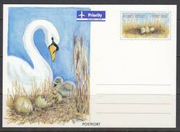 Aland Postal Card. Swan. - Oiseaux