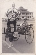 DURBAN 1941 - TRANSPORT - South Africa