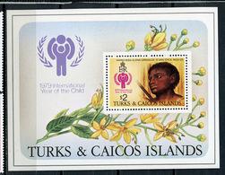 1979 - TURKS E CAICOS  -  Mi. Nr. BL 15 - NH - (CW4755.22) - Turks And Caicos