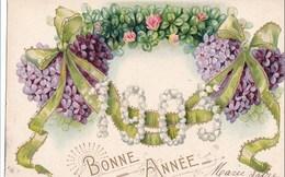 BONNE ANNEE 1905 - Año Nuevo