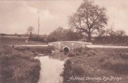 ASHTEAD COMMON. RYE BRIDGE - Surrey
