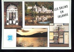CPM Irlande Multi Vues CP Pour Le Voyage Des SALINS ?? De 1994 Comité D'Etablissement De Montpellier - Ireland