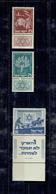 MOYEN ORIENT 1951 - ISRAEL XX LUXE - N°46/48 AVEC TABS - Israel